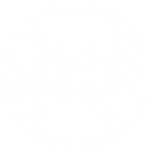 action-logo44